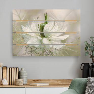 Holzbild - Weiße Nigella - Querformat 2:3