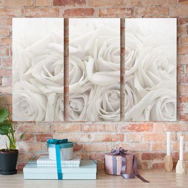 Leinwandbild 3-teilig - Weiße Rosen - Hoch 1:2