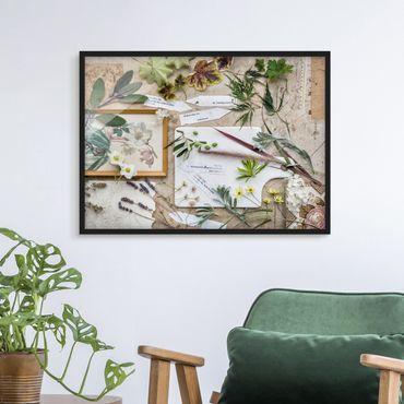 Bild mit Rahmen - Blumen und Gartenkräuter Vintage - Querformat 3:4