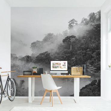 Fototapete - Dschungel im Nebel Schwarz Weiß - Fototapete