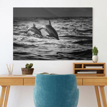 Leinwandbild - Zwei springende Delfine - Querformat 2:3