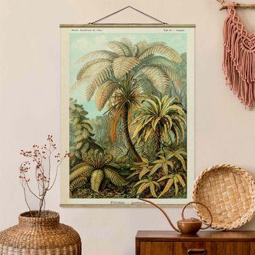 Stoffbild mit Posterleisten - Botanik Vintage Illustration Laubfarne - Hochformat 3:4