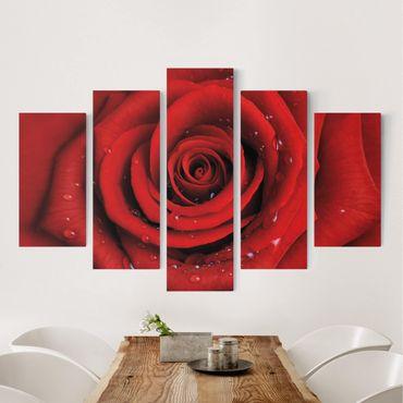 Leinwandbild 5-teilig - Rote Rose mit Wassertropfen