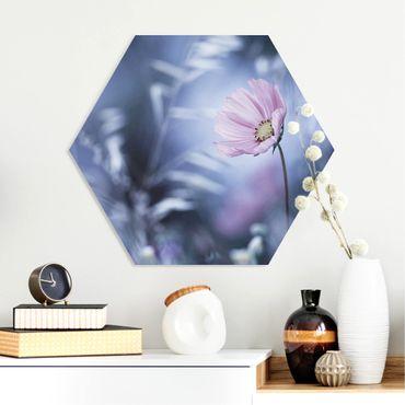 Hexagon Bild Forex - Blüte in Pastell