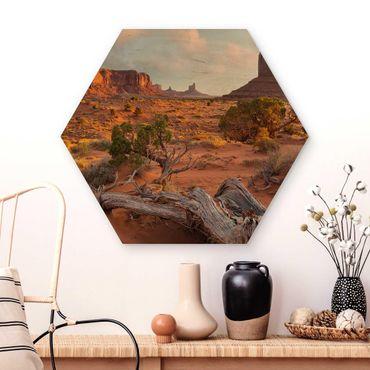 Hexagon Bild Holz - Monument Valley Navajo Tribal Park Arizona