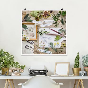 Poster - Blumen und Gartenkräuter Vintage - Quadrat 1:1
