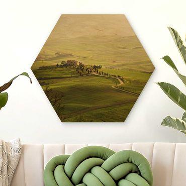 Hexagon Bild Holz - Chianti Toskana