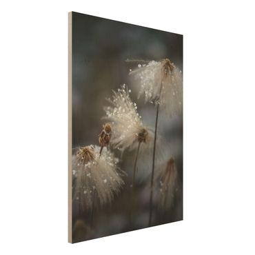 Holzbild - Pusteblumen mit Schneeflocken - Hochformat 4:3