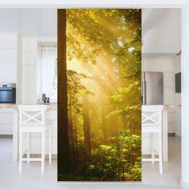 Raumteiler - Morgengold 250x120cm