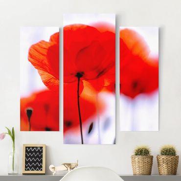 Leinwandbild 3-teilig - Magic Poppies - Galerie Triptychon