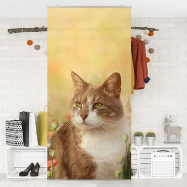 Raumteiler Kinderzimmer - Katze im Mohnfeld 250x120cm