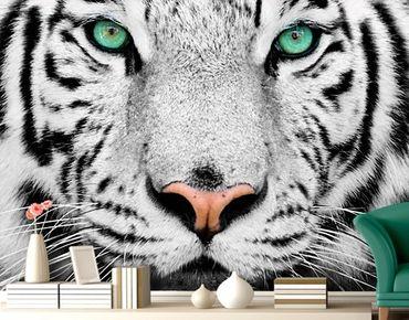 "Papiertapete - Fototapete No.220 ""WHITE TIGER"" 280x200cm"