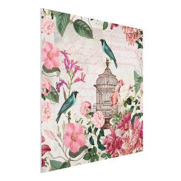 Forex Fine Art Print - Shabby Chic Collage - Rosa Blüten und blaue Vögel - Quadrat 1:1
