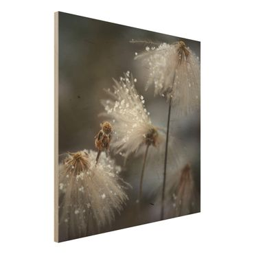 Holzbild - Pusteblumen mit Schneeflocken - Quadrat 1:1