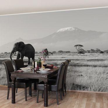 Fototapete Elefanten vor dem Kilimanjaro in Kenya II