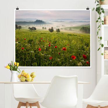 Poster - Toskana Frühling - Querformat 3:4