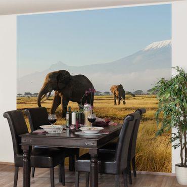 Fototapete Elefanten vor dem Kilimanjaro in Kenya