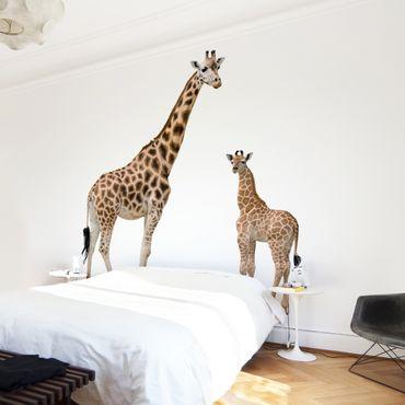 Fototapete Giraffe Mutter und Kind