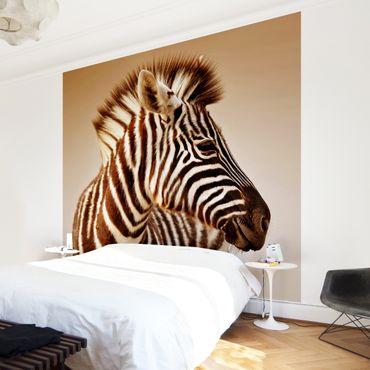 Fototapete Zebra Baby Portrait