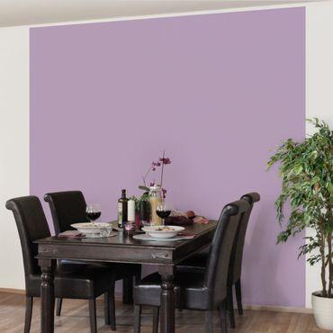 Fototapete Colour Lavender
