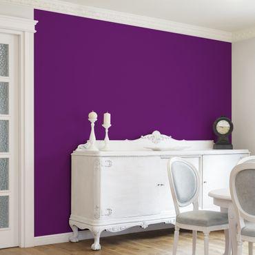 Fototapete Colour Purple