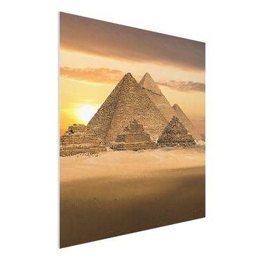 Forexbild - Dream of Egypt