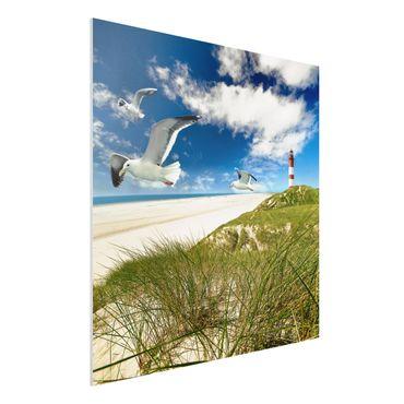 Forexbild - Dune Breeze