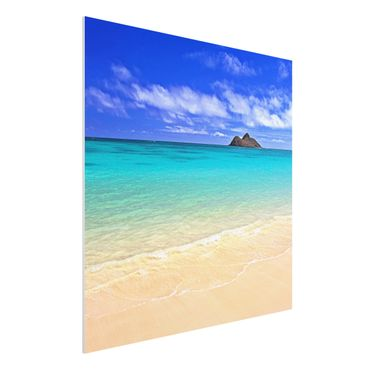 Forexbild - Paradise Beach