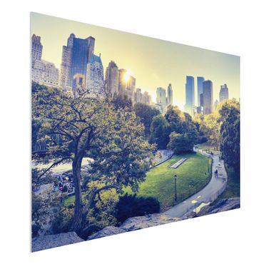 Forexbild - Peaceful Central Park