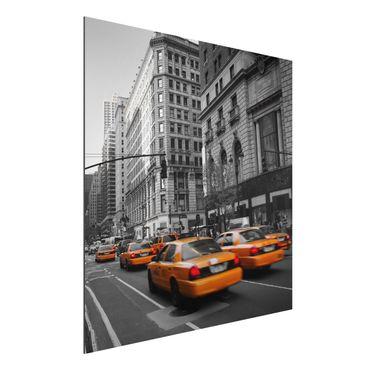 Alu-Dibond Bild - NEW YORK, NEW YORK