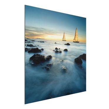 Alu-Dibond Bild - Segelschiffe im Ozean