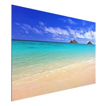 Alu-Dibond Bild - Paradise Beach