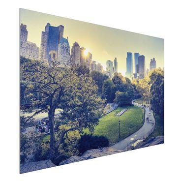 Alu-Dibond Bild - Peaceful Central Park
