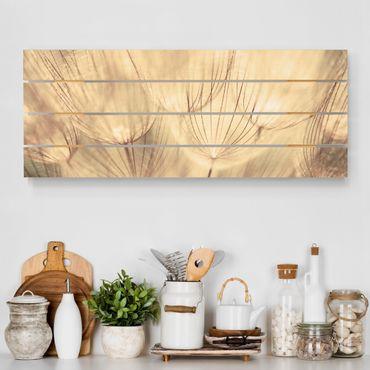 Holzbild - Pusteblumen Nahaufnahme in wohnlicher Sepia Tönung - Querformat 2:5