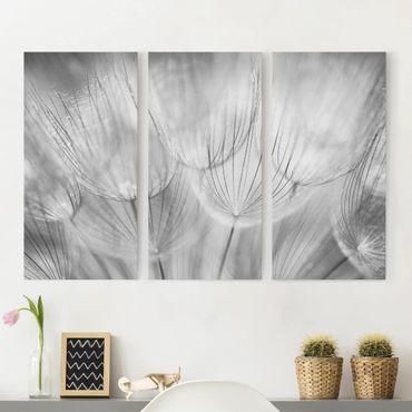 Leinwandbild 3-teilig - Pusteblumen Makroaufnahme in schwarz weiß - Hoch 1:2