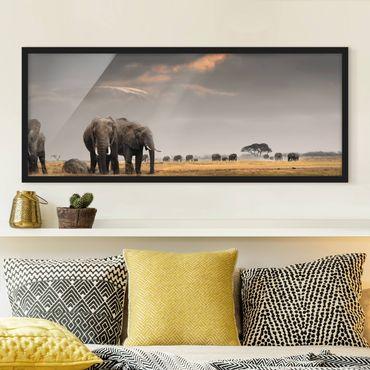 Bild mit Rahmen - Elefanten der Savanne - Panorama Querformat