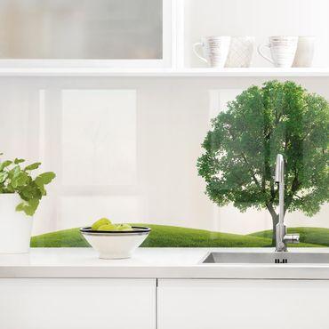 Küchenrückwand - Grüne Ruhe