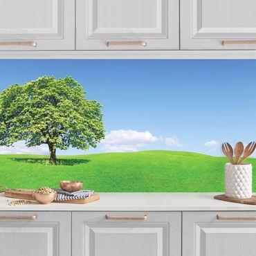 Küchenrückwand - Panoramic