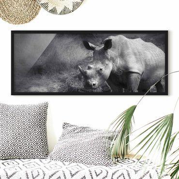 Bild mit Rahmen - Lonesome Rhinoceros - Panorama Querformat