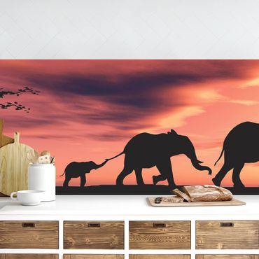 Küchenrückwand - Savannah Elefant