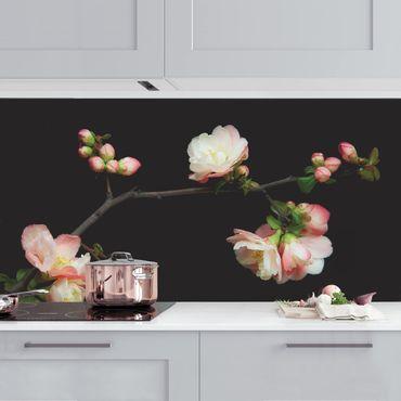 Küchenrückwand - Blütenzweig Apfelbaum
