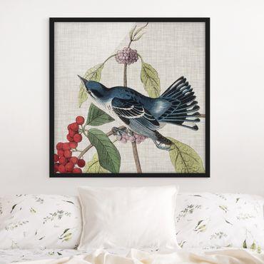 Bild mit Rahmen - Vogel auf Leinen Rosa II - Quadrat 1:1