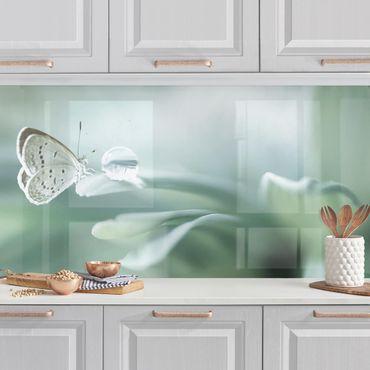 Küchenrückwand - Schmetterling und Tautropfen in Pastellgrün