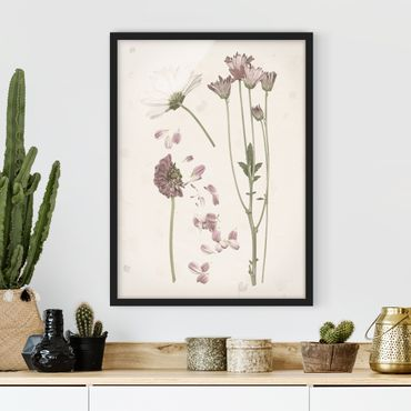 Bild mit Rahmen - Herbarium in rosa II - Hochformat 4:3