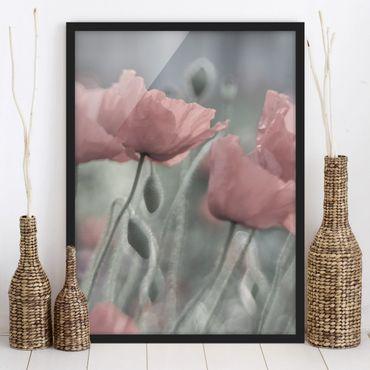 Bild mit Rahmen - Malerische Mohnblumen - Hochformat 3:4