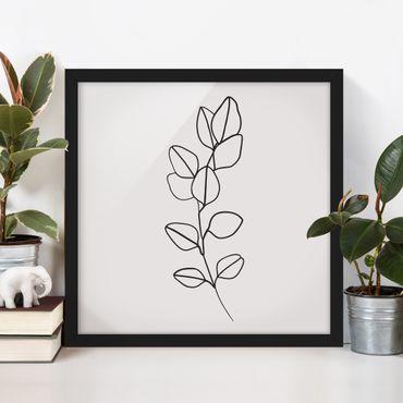 Bild mit Rahmen - Line Art Zweig Blätter Schwarz Weiß - Quadrat 1:1