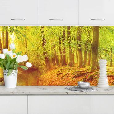 Küchenrückwand - Herbstwald