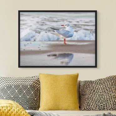 Bild mit Rahmen - Möwe am Strand vor Meer - Querformat 3:4