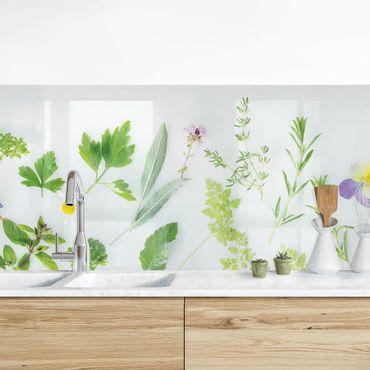 Küchenrückwand - Kräuter und Blüten II