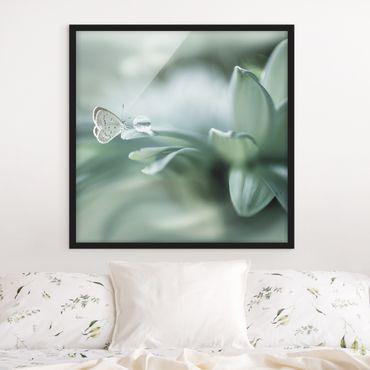 Bild mit Rahmen - Schmetterling und Tautropfen in Pastellgrün - Quadrat 1:1